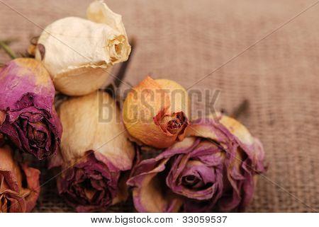 Rose bouquet