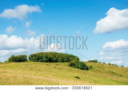 Small Forest On The Hill. Simple Countryside Scenery In Early Autumn Or Spring. Blue Sky With Puffy