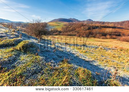 Frosty Morning In Mountainous Countryside. Wonderful Sunny Weather. Late Autumn Scenery With Leafles