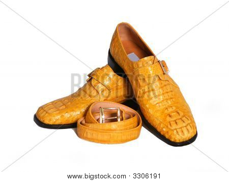 Exotic Shoes And Belt