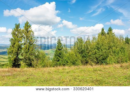 Forest On The Edge Of A Hill. Cozy Nature Scenery In Mountains. Wonderful Sunny Weather With Clouds