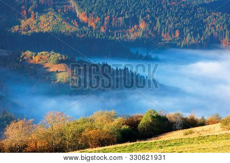 Fantastic Sunny Morning In Mountains. Beautiful Carpathian Countryside In Autumn. Fog In The Valley.