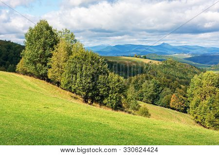 Wonderful Countryside In Mountains On A Sunny Day. Trees On The Grassy Hillside Meadow. Distant Ridg
