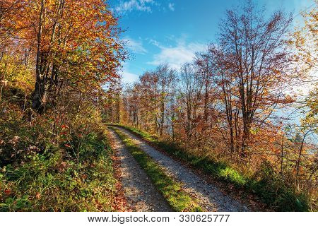 Gravel Road Through Autumn Forest. Path On The Edge Of A Hill Side. Wonderful Autumn Weather At Sunn