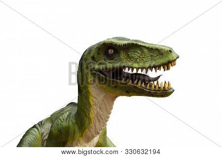 Primeval Dinosaur Tyrannosaurus In Front Of White Background With Copy Space