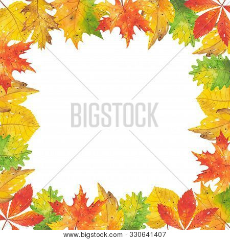 Square Watercolor Frame Of Autumn Leaves And Branches. Forest Red-yellow-green Natural Elements. Aut