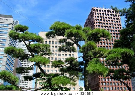 Tokyo Modern Offices