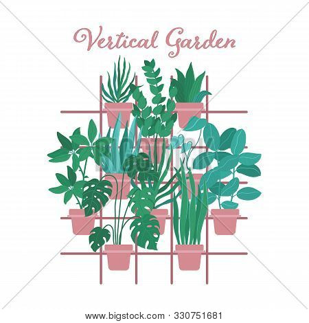 Indoor Vertical Garden, Greenery Wall With Palms, Cacti And Other Plants In Pots Hanging On Trellis,