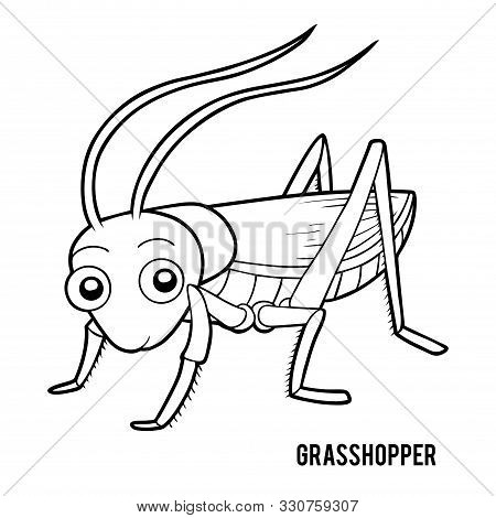 Coloring Book For Children, Cartoon Insects - Grasshopper