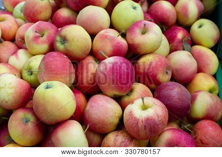 Red Apples. The Apples. Apples As A Background For Designers. Lots Of Apples On The Market Or In The