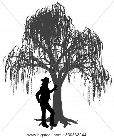 Young Woman With Hat Is Leaning Against A Weeping Willow Tree. Woman Leaned A Hand On Trunk Of Weepi