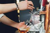 Close up of a male bartender dispensing draught beer in a pub holding large glass tankard under a spigot attachment on a stainless steel keg. poster