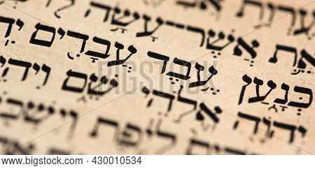 Closeup Of Hebrew Words In Torah Page That Translate In English As Cursed Be Canaan, A Servant Of Se