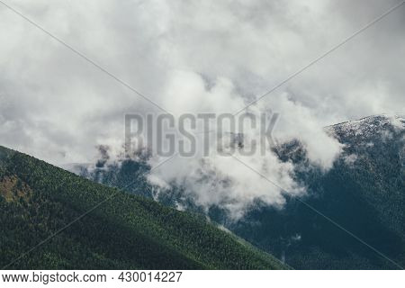 Awesome Alpine View To Large Forest Mountain With Snow-covered Top In Gray Low Clouds In Overcast We