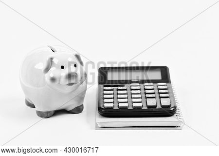Financial Help Services. Financial Support Consulting. Courses Financial Literacy. Piggy Bank Money