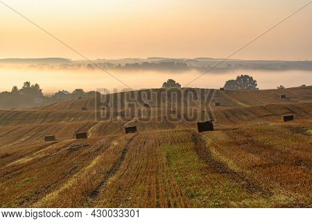 Landscape Of A Large Mown Agricultural Wheat Field With Bales Of Straw Lying On The Ground At Sunris