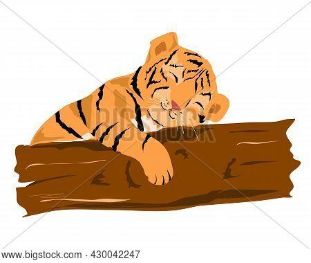 A Little Tiger Cub Sleeps Near A Tree.