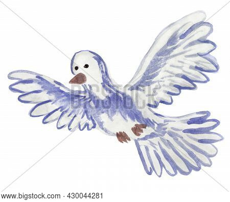 Watercolor Illustration Of Flying Dove Isolated On White Background. Hand Drawn Blue Bird With Outst