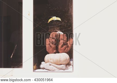 Halloween Lady Wearing Witch Cup. A Woman In Witch Hat And Halloween Pumpkin Near The Windows. Portr