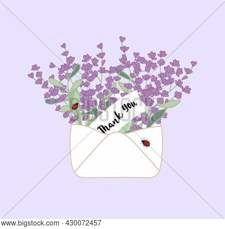 Vintage Open Envelope With Hand Drawn Lavender Flowers And Ladybug With Quote Thank You. Cute Stock