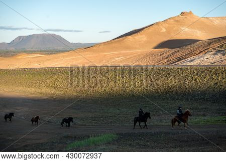 South Iceland - July 23, 2017: Icelandic Horse In The Field Of Scenic Nature Landscape Of Iceland. T