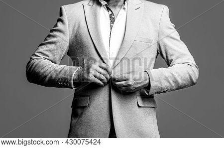 Elegant Handsome Man In Suit. Man In Suit. Elegant Man In Business Suit. Male In Tuxedo. Handsome Bu