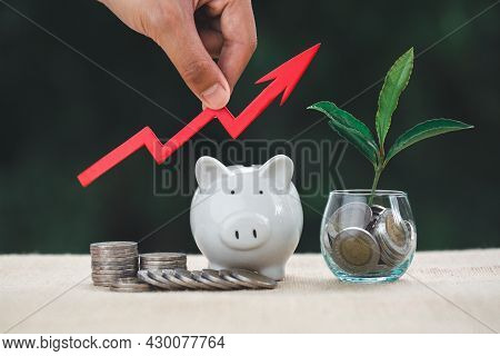 Businessman Holding The Graph Above The Coin And Tree Growing On Money Coin Stack. Finance Sustainab