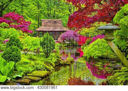 Perfect Japanese Garden With Asian Zen Sculptures And Red Maple Trees In Park Clingendael In The Hag