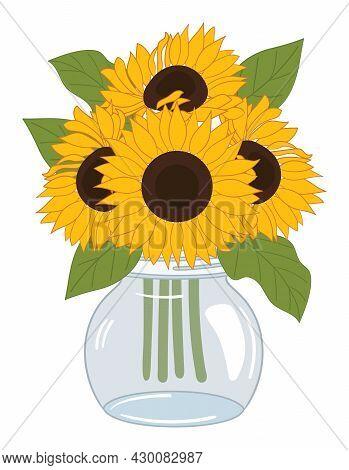 Vector Sunflower Bouquet In Mason Glass Ja On White Background Sunflower Bunch Vector Illustration