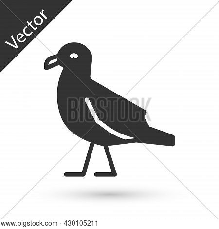 Grey Bird Seagull Icon Isolated On White Background. Vector