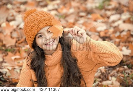 Perfect Autumn Day Of Cheerful Girl In Knitted Hat And Sweater Relax In Fall Season Forest Enjoying