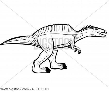 Dinosaur Predator Hand Engraved Vector Illustration. Prehistoric Extinct Animal Of The Jurassic Peri