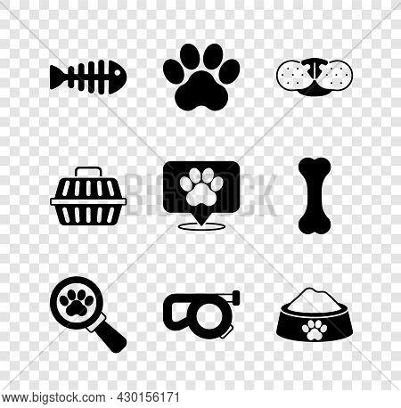 Set Fish Skeleton, Paw Print, Cat Nose, Veterinary Clinic, Retractable Cord Leash, Pet Food Bowl, Ca