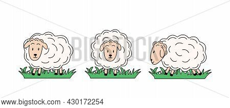Set Of Sheep In Different Poses. Vector Illustration Of Farm Animals. Cartoon Sheeps In A Flat Style
