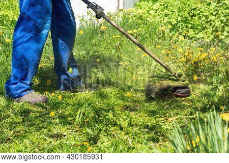 The Gardener Mows The Grass With A Trimmer In The Garden.