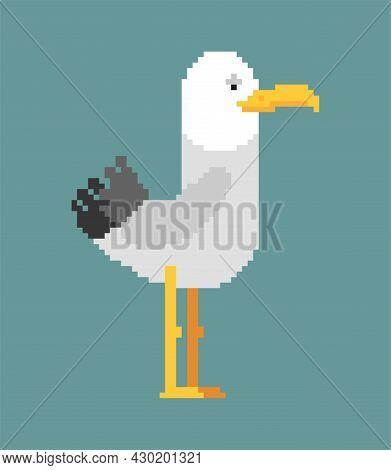 Gull Pixel Art. Seagull 8 Bit. Sea Bird Pixelated Vector Illustration.