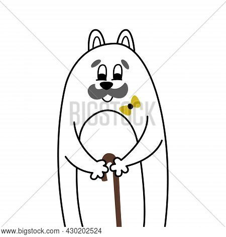 Old Grandfather Cat With A Large Gray Mustache Stands Leaning On A Wooden Cane. Funny Comic Portrait