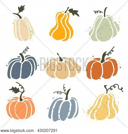 Set Of Pumpkins Isolated On White Background. Elements For Autumn Decorative Design, Halloween Invit