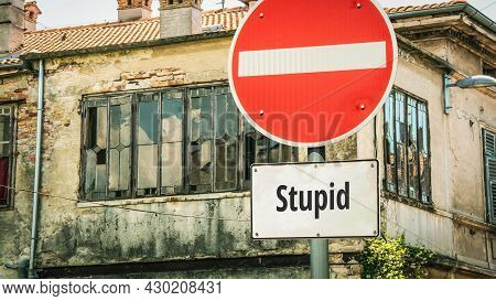 Street Sign The Direction Way To Clever Versus Stupid