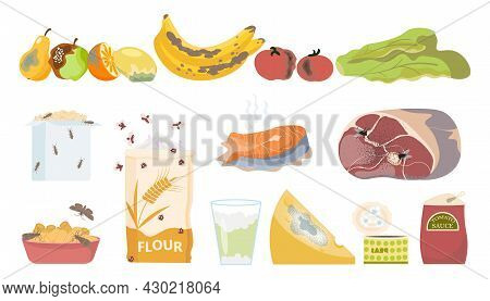 Danger Food Rotten Poison Set With Flat Isolated Icons Of Expired Products With Mould And Insects Ve