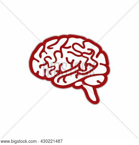Brain Vector. Brain Icon Isolated On White Background From Health And Protection Collection. Brain I