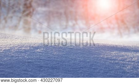 Winter View, Christmas Background. Snow-covered Ground On A Background Of Winter Forest In The Morni