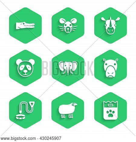 Set Elephant, Sheep, Bag Of Food, Hippo Or Hippopotamus, Collar With Name Tag, Cute Panda Face, Rhin