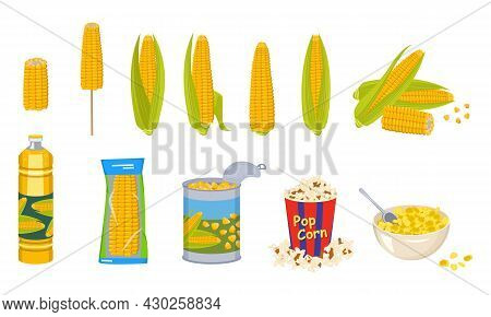 Set Of Corn Cobs, Oil, Tin Can, Popcorn And Cornflakes In A Bowl. Group Of Yellow Delicious Vegetabl