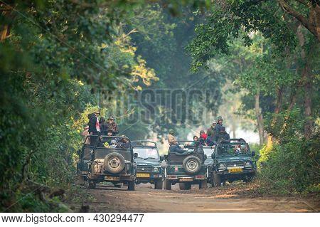 Jim Corbett National Park, Ramnagar, Uttarakhand, India - December 8, 2020 - Tourists And Photograph