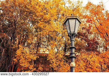Fall October trees background, metal street lantern on the background of the golden October fall trees. Fall October park scene in retro tones