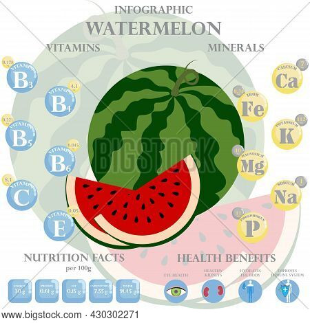 Infographic About Nutrients In Watermelon. Vector Illustration Of Watermelon, Vitamins, Fruits, Heal
