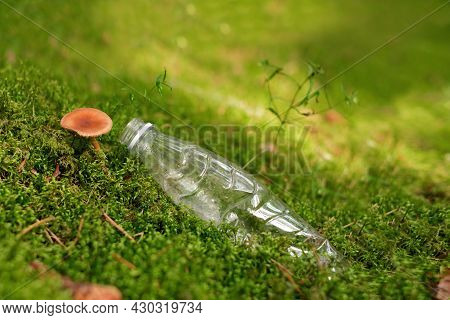 A Plastic Bottle On Forest Moss With Growing Mushrooms. The Concept Of Environmental Pollution. Copy