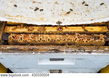 Open Hive With Visible Frames With Honeycombs - An Offset Upper Body And Cover