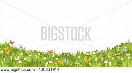Meadow With Wildflowers And Butterflies. Illustration. Grass Close-up. Beautiful Green Landscape. Is